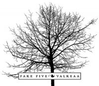 fake_five